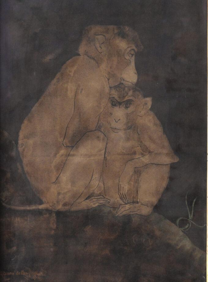 Apen in Artis