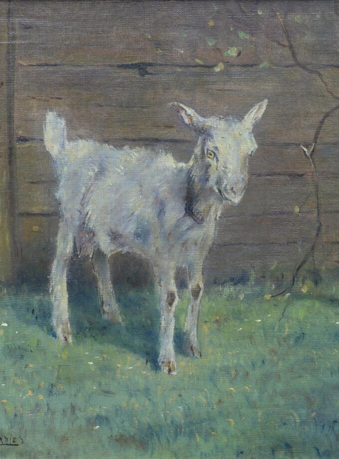 schilderij geitje